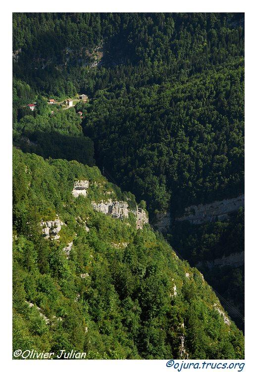 Quelques photos d'Olivier J. paysages et animaux jurassiens 20100810213022-429b2b1d