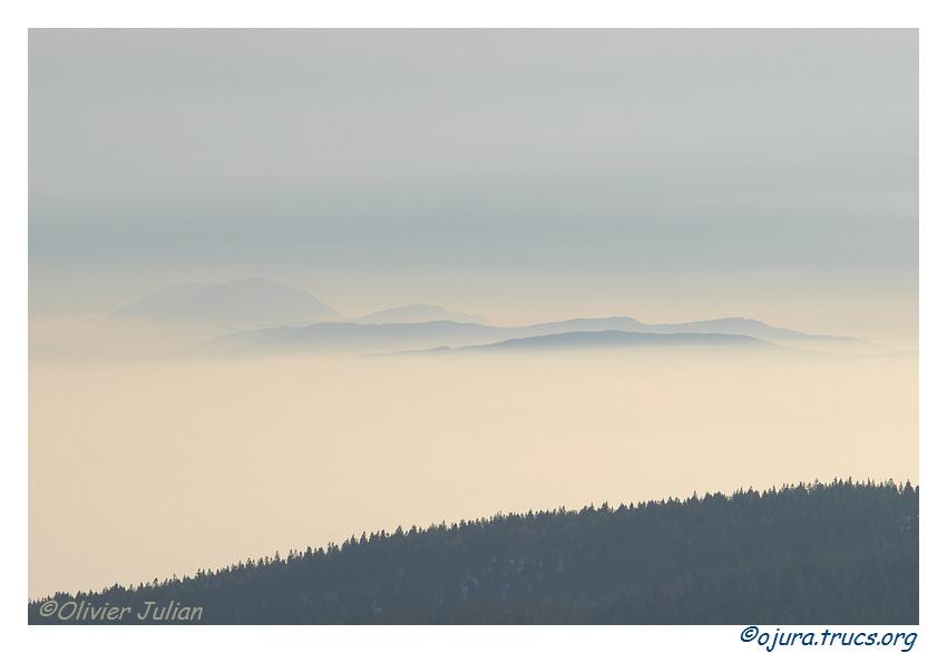 Quelques photos d'Olivier J. paysages et animaux jurassiens 20110129202632-6f2b3c29