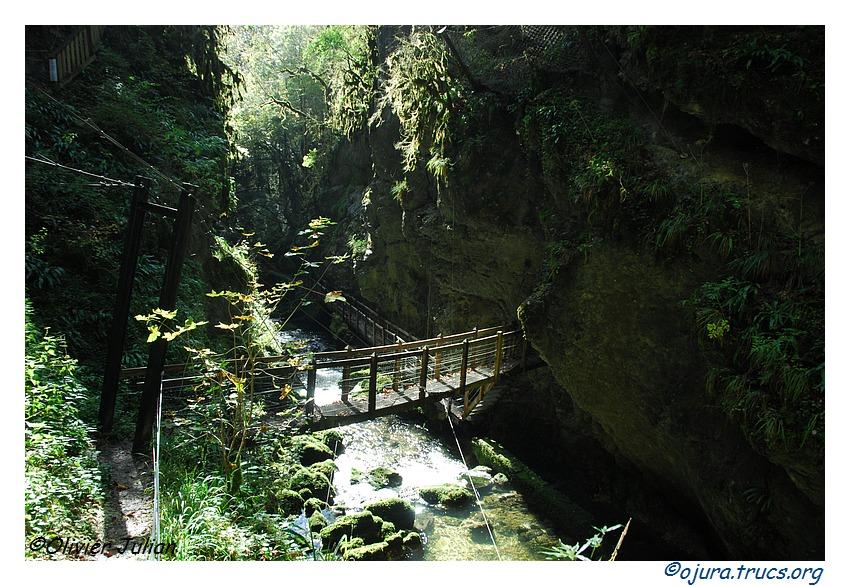 Les Gorges de l'Abîme par O. Julian - Octobre 2011 20111013165007-345c2402