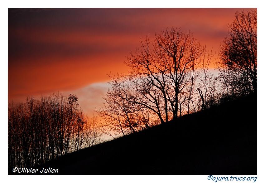 Quelques couleurs d'automne 20111108214840-d24e72b1